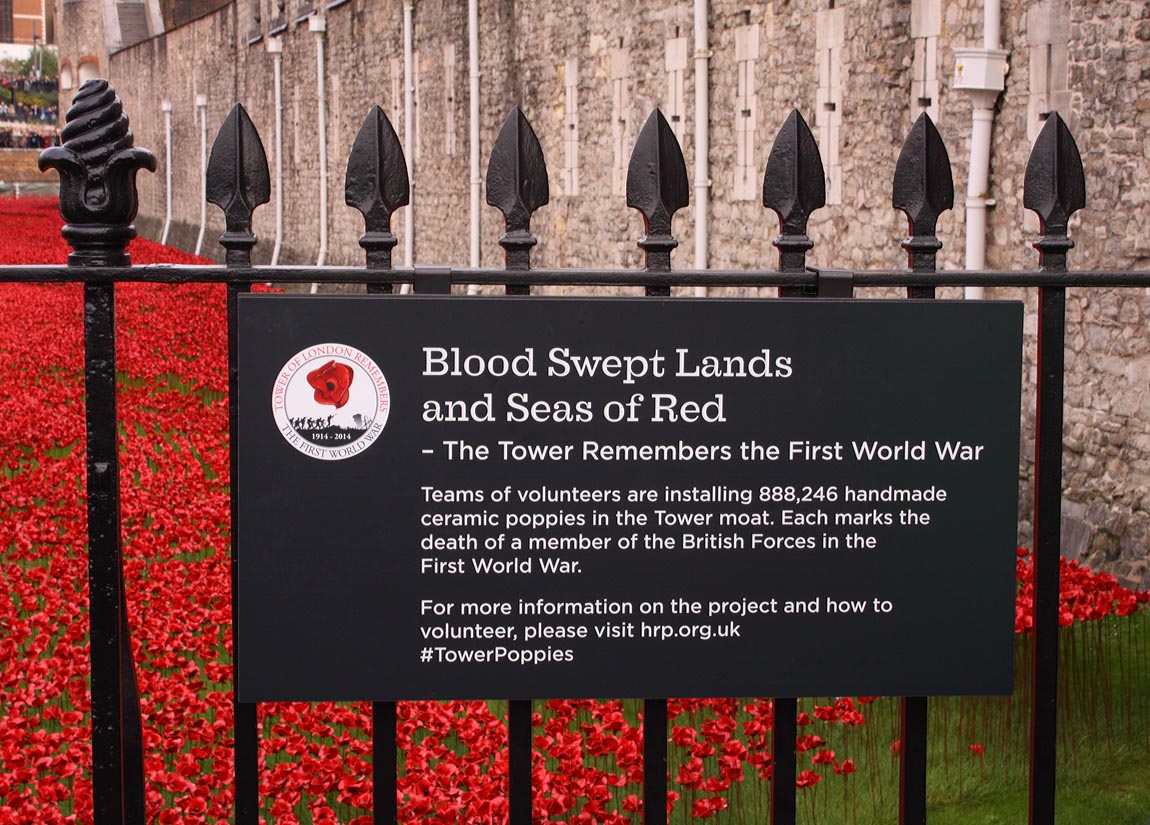 Tower Poppies 1737646