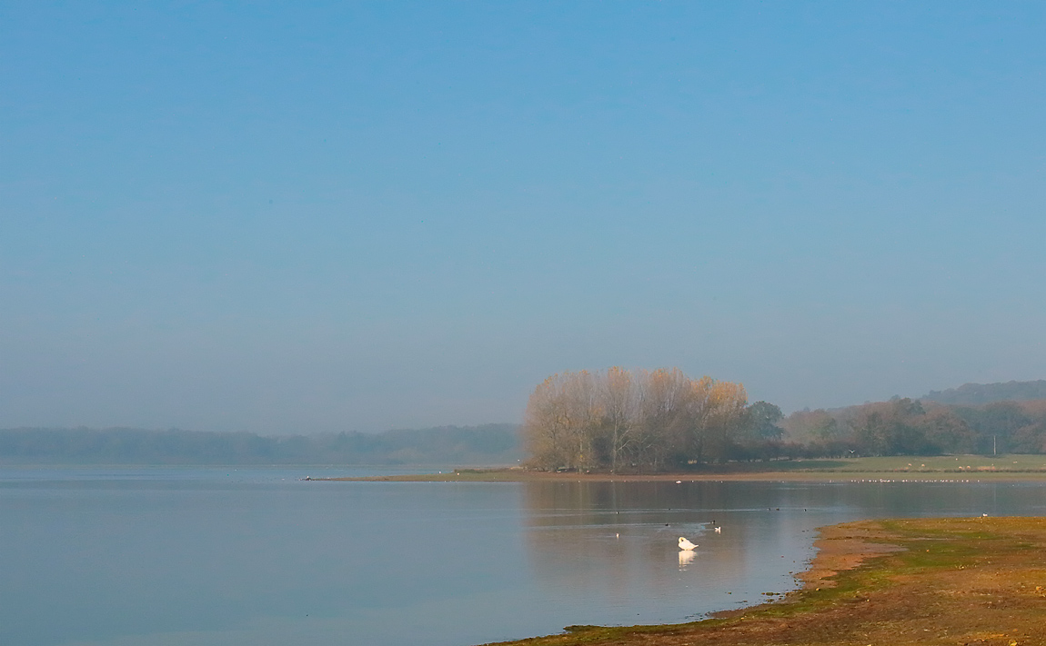 Rutland Water_S1Q1104