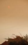 A Saharan Sun